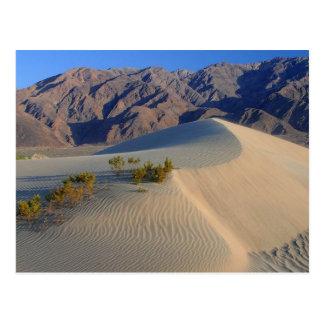 Death Valley California Postcard