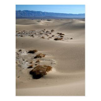 Death Valley Dunes 3 Postcard