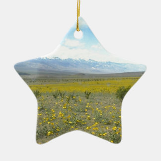 Death Valley in Bloom Ceramic Ornament