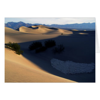 Death Valley Morning Dunes Blank Card