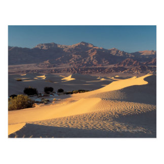 Death Valley National Monument , California Postcard