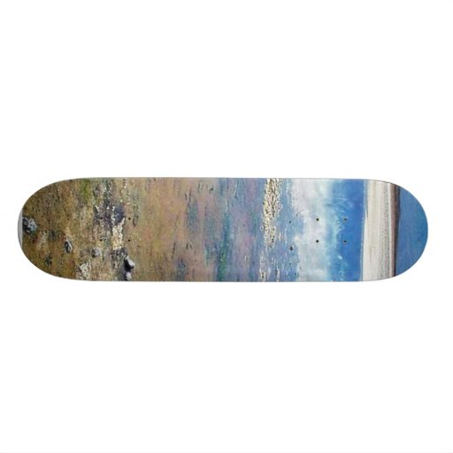 Death Valley Salt Skateboards
