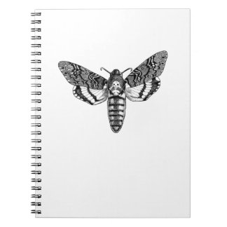 Death's-Head Moth Notebook