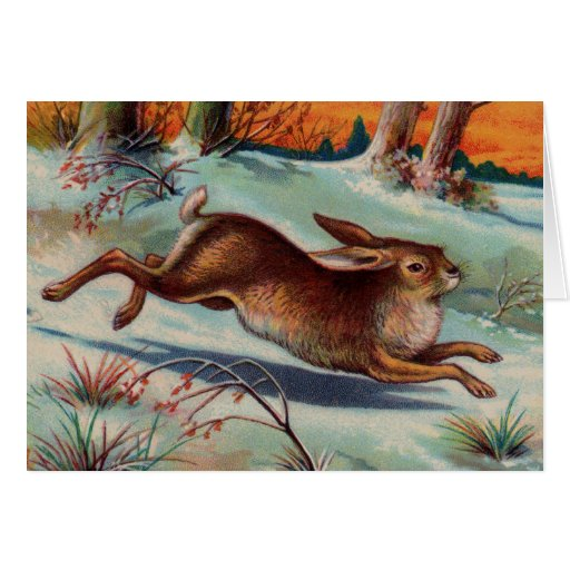 December Rabbit Greeting Card