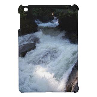 Deception Falls iPad Mini Cases