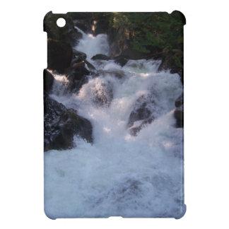 Deception Falls iPad Mini Cover