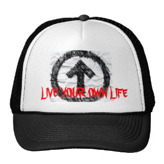 Decide Mesh Hats