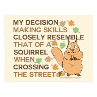Decision Making Skills Squirrel Humor Postcard