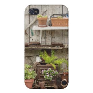 Décorations sur la barrière en bois, île de coques iPhone 4/4S