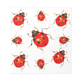 DECORATIVE RED LADY BUG GIFTS NOTEPAD