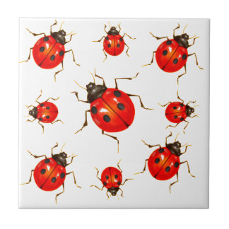 DECORATIVE RED LADY BUG GIFTS TILE