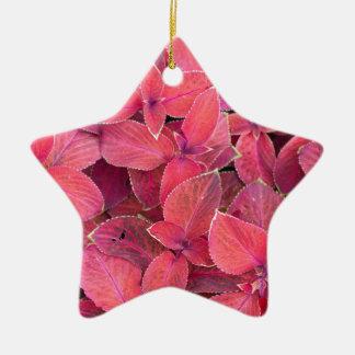 Decorative red plants ceramic star ornament