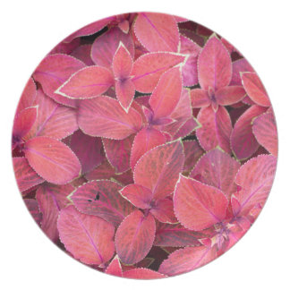 Decorative red plants dinner plate