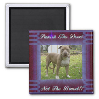 deed not breed square magnet