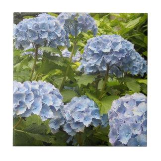 Deep Blue Hydrangeas Tile