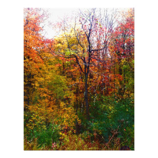 Deep In The Woods Letterhead