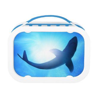 Deep Ocean Shark Silhouette Lunchboxes