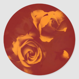 Deep orange glow roses classic round sticker