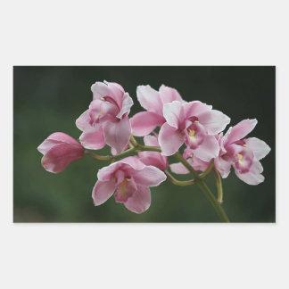 deep pink orchid rectangle sticker