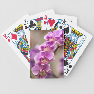 Deep Pink Phalaenopsis Orchid Flower Chain Bicycle Playing Cards