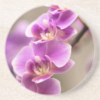 Deep Pink Phalaenopsis Orchid Flower Chain Drink Coasters