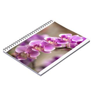 Deep Pink Phalaenopsis Orchid Flower Chain Notebook