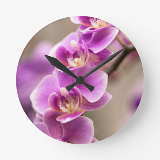 Deep Pink Phalaenopsis Orchid Flower Chain Round Clock