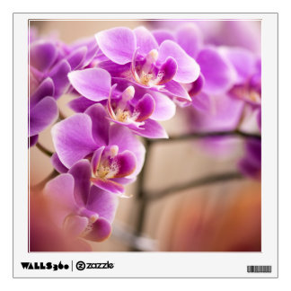 Deep Pink Phalaenopsis Orchid Flower Chain Wall Decal