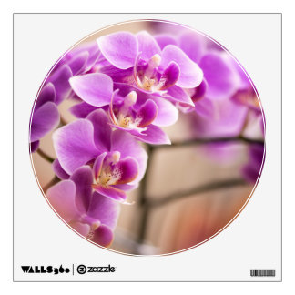 Deep Pink Phalaenopsis Orchid Flower Chain Wall Sticker