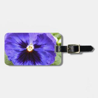 Deep Purple Pansy Luggage Tag