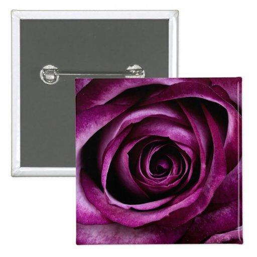Deep Purple Rose Buttons