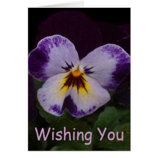 Deep Purple White Pansies Card