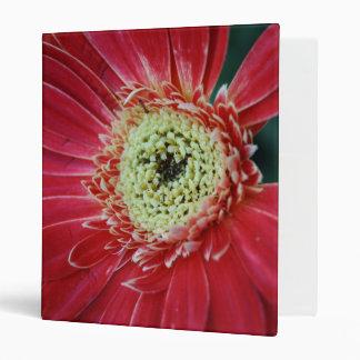 Deep Red Gerbera Flower 3 Ring Binder