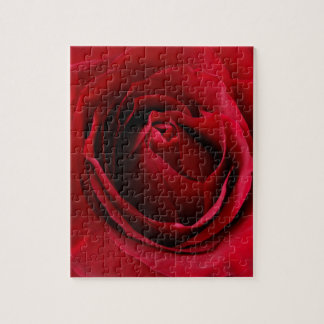 deep red rose jigsaw puzzle