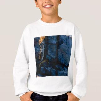 deep vertical cracks in rock sweatshirt