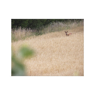 Deer 2 canvas print