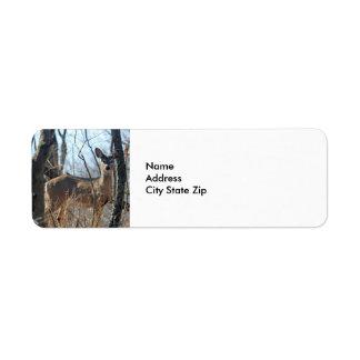 Deer 784 return address label
