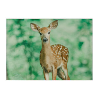 Deer Acrylic Wall Art