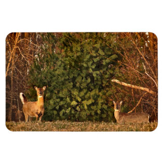 Deer at Sunrise Magnet