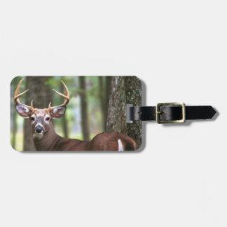 deer bag tag hunters bag tag
