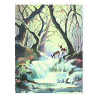 DEER CREEK by SHARON SHARPE Postcard