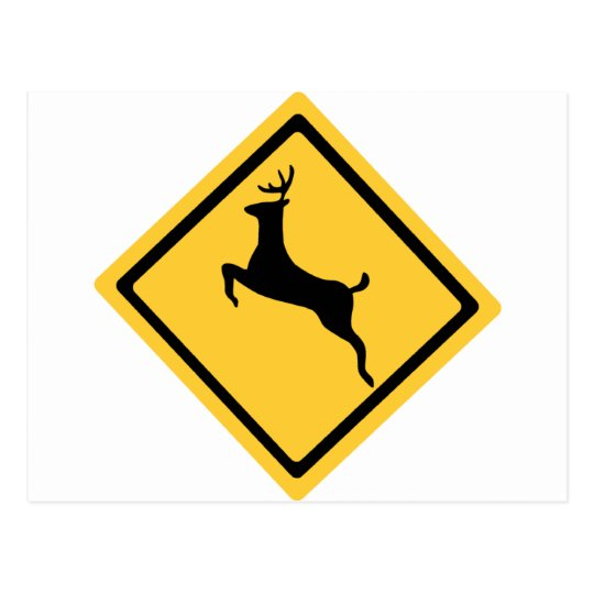 Deer Crossing Symbol Postcard