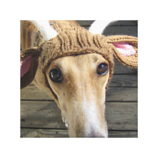 Deer dog - cute dog - whippet canvas print