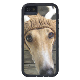 Deer dog - cute dog - whippet iPhone 5 cover