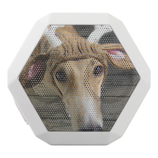 Deer dog - cute dog - whippet white bluetooth speaker