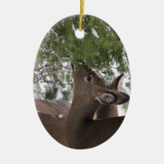 Deer Eating Cedar Branches Ceramic Oval Ornament