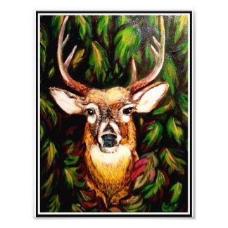 Deer emerging photograph
