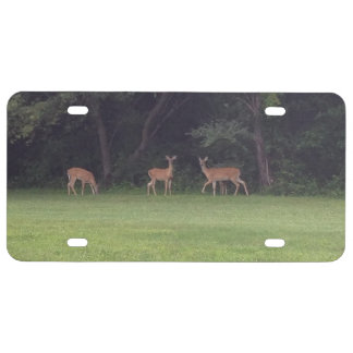 Deer Family License Plate