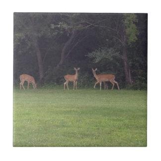 Deer Family Tiles