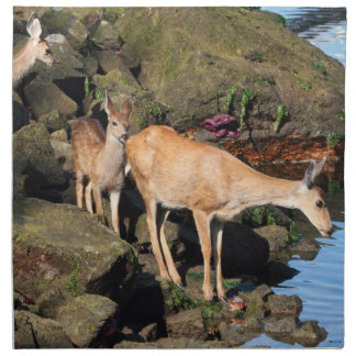 Deer Family with Twin Fawns by the Ocean Napkins